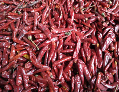 Chilli Colour Sorting Video